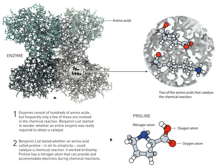不对称合成20年后轮回,2021化学诺奖工作有何不平凡之处?